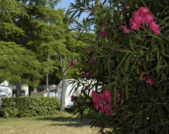 emplacement camping bon port